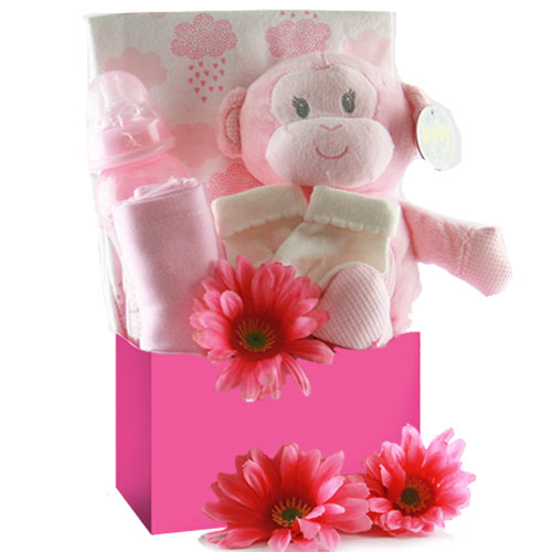 Image 0 of Special Delivery: Baby Gift Basket - Choose Boy, Girl or Neutral